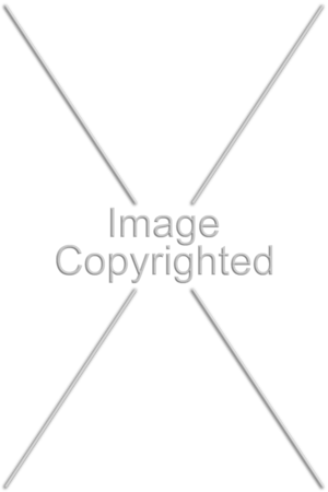 """Giant Size, use for portrait oriented images.<br /> Text reads """"Image Copyrighted"""""""