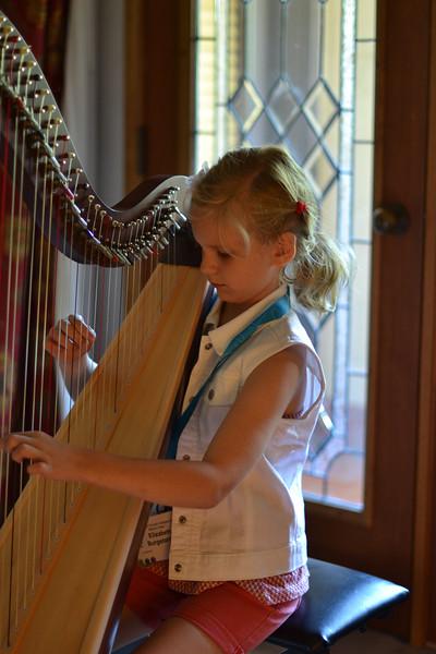 CSI_June19, 2015_Harp Bk 1 with Phala Tracy (11)