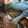 CSI_June 27, 2015_Cello Musicianship Improv Bratt Renata (145)