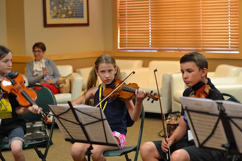 CSI_June 24  2015_DAY_violin musicianship Improv with Bill Kronenberg (45)