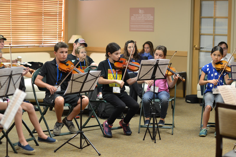 CSI_June 24  2015_DAY_violin musicianship Improv with Bill Kronenberg (34)
