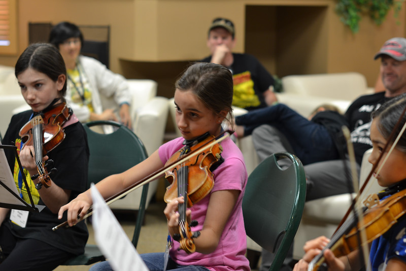 CSI_June 24  2015_DAY_violin musicianship Improv with Bill Kronenberg (46)