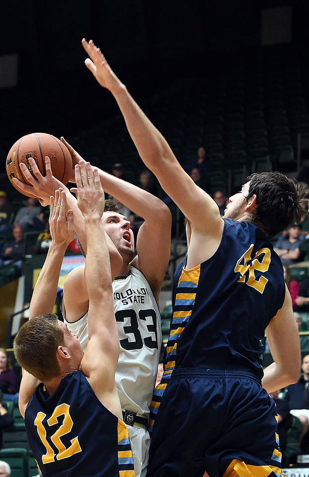 Colorado State University's #33 Braden Koelliker goes up for a shot as Fort Lewis' #12 Rasmus Bach and #42 Riley Farris try to block during their game Wednesday, Nov. 16, 2016, at Moby Arena in Fort Collins. (Photo by Jenny Sparks/Loveland Reporter-Herald)