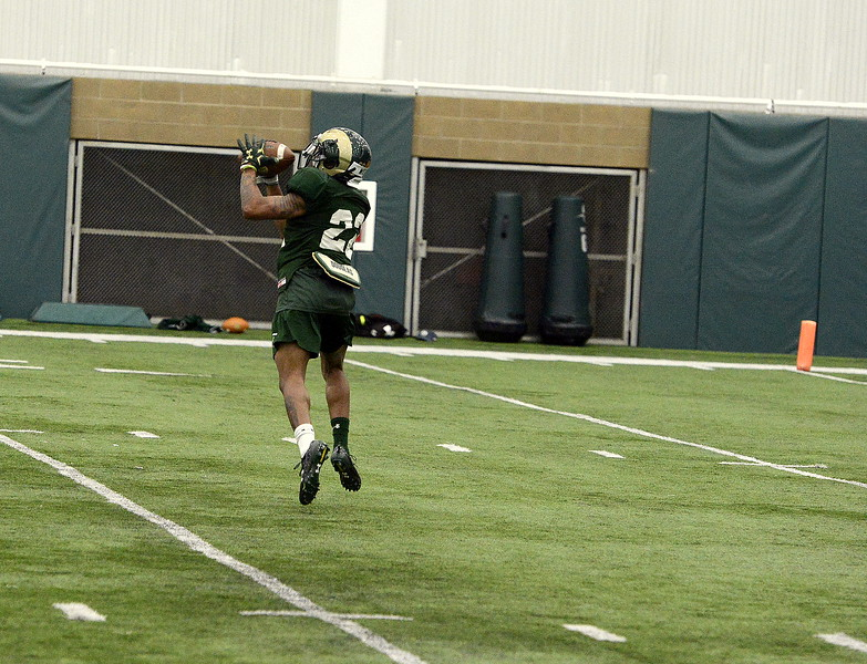 Colorado State freshman Darius Wise makes a catch during Friday's practice. Head coach Mike Bobo has praised his ability to work at all three wide receiver positions in spring camp. (Mike Brohard/Loveland Reporter-Herald).