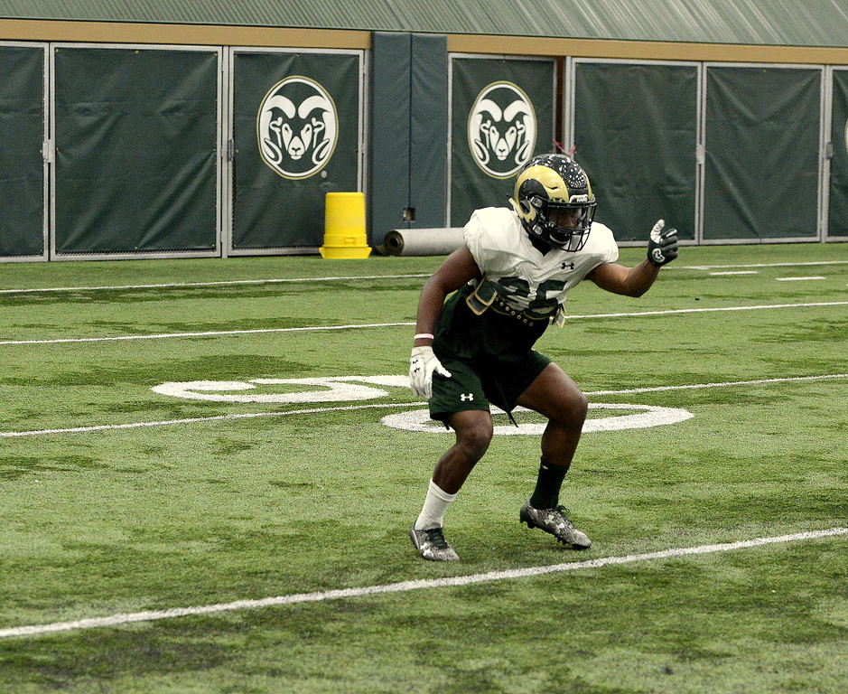 Darius Cambell works on a punch drill during Friday's practice as Colorado State's football team moved indoors due to a spring snow. The sophomore played in all 13 games last year, mostly on special teams, recording eight tackles. He has impressed during camp as he battles for a spot as a nickel back. (Mike Brohard/Loveland Reporter-Herald).