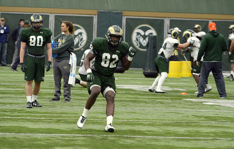 Sophomore tight end Isaih Pannunzio runs a route during Friday's practice, the eighth of the spring camp for Colorado State. Head coach Mike Bobo said the Pueblo South product has shown the staff they shouldn't forget about him as the Rams look for a new starter. (Mike Brohard/Loveland Reporter-Herald).