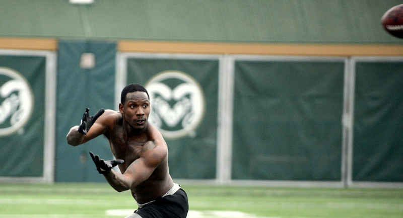 Colorado State receiver Preston Williams eyes the ball as he runs routes for scouts Wednesday at pro day. Williams' on-field production has scouts intrigued, but his off-field activities have some concerned. (Mike Brohard/Loveland Reporter-Herald)