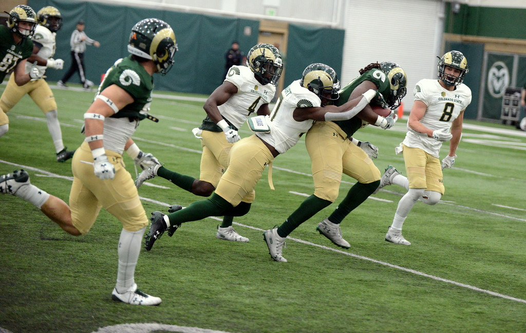 . Colorado State running back Marcus McElroy gets pulled down from behind by safety Logan Stewart after a long run during Thursday\'s scimmage at the indoor practice facility. (Mike Brohard/Loveland Reporter-Herald)