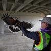 CSU Monterey Bay Construction