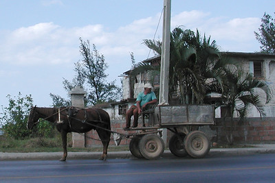 Horse and Buggy - Cuba •••  Carros de Cuba - Cars of Cuba  •••