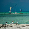 Klug Photos - Cuba 2011 - Cayo Largo, Cuba - Avalon Fly Fishing