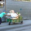 Edie Sanchez_7 Pushing a 3-wheeler