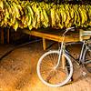 Edie Sanchez_4 Bike and Tobacco