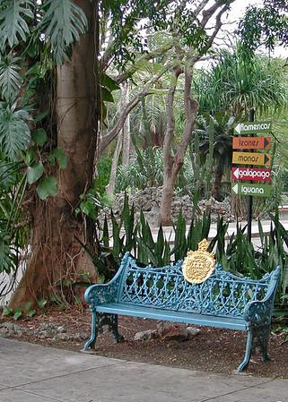 Havana Zoo... 8 x 12 format...