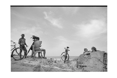 Shark Watchers, Bicyles and Bathing Beauties