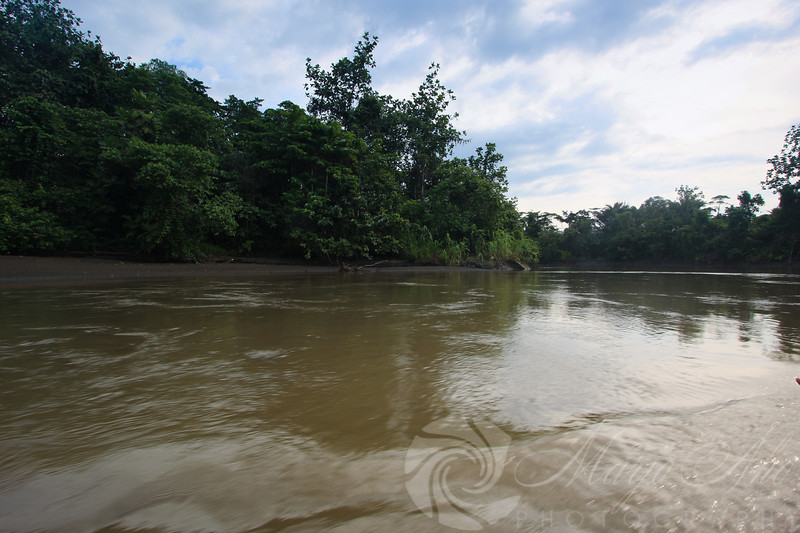 The currents on the shallow river can be treacherous and the muuddy water conceals sandbanks, logs and roots.  One must navigate it carefully as a mistake might lead to the passengers joining the PukPuks in the river.