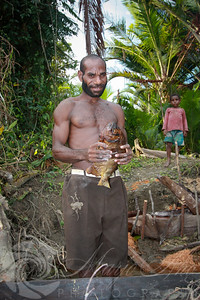 Sago and fish are the staple foods of the people of the Sepik River and tributaries. This manis holding a Pacu, a Southamerican relative to the Piranha that was imported to the the Sepik to help contol the invasive and out of control water hyasinth.