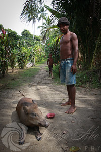 A stop to pick up fule in Valentine's village and an introduction to a friendly pig.