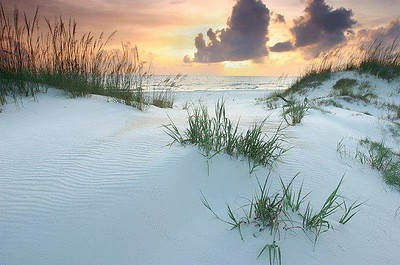 Why is the sand so white on the Florida Panhandle?