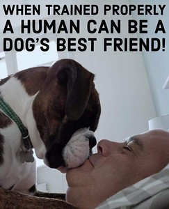 The Properly Trained Human
