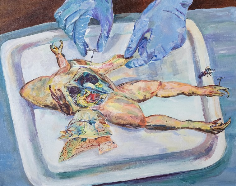 The Dissection (Emilia Thompson)
