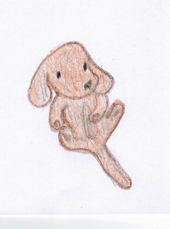 My dog Pooch (Zoe)