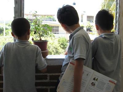plotting their escape