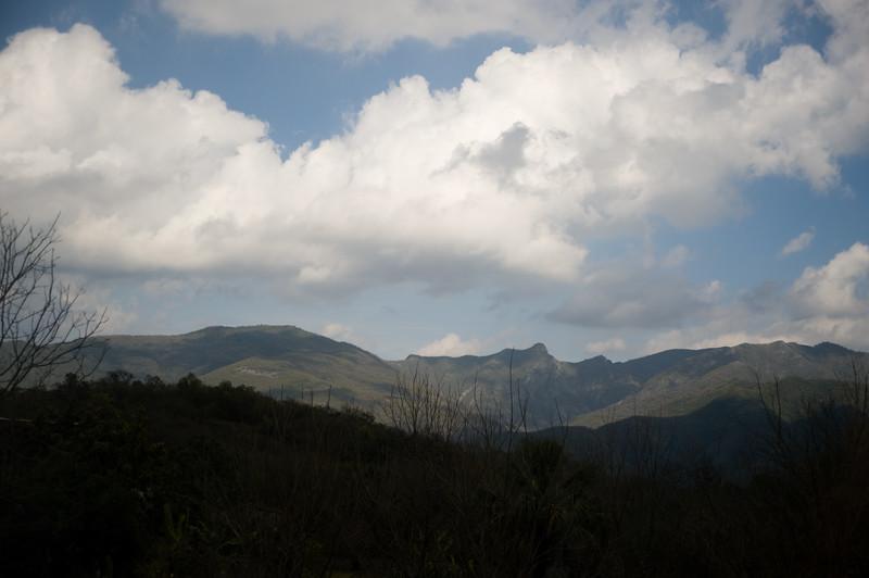Monterrey0209-639.jpg