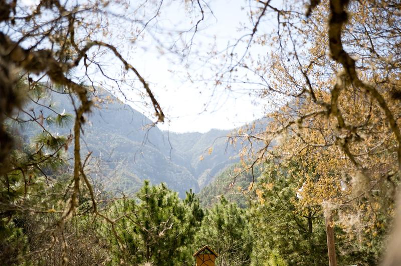 Monterrey0209-564.jpg