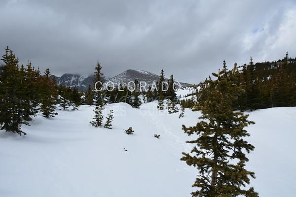 April 20 Mt Lady Washington