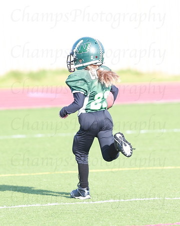 WARRIORS VS VIPERS 6U