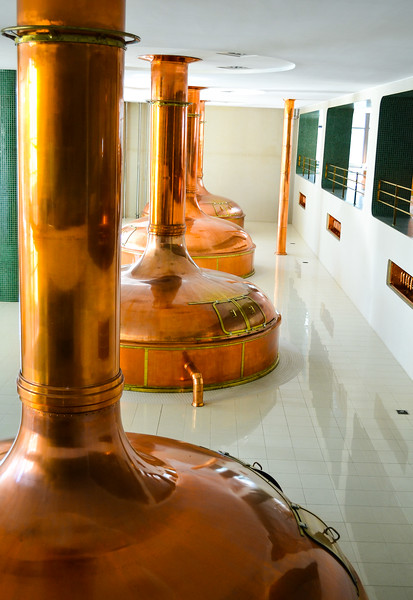 Copper Brewing Vessels<br /> Varna Brewhouse  <br /> Pilsen