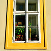 A GLEAMING PRAGUE WINDOW