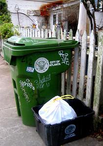 Cabbage Town Atlanta GA (8)