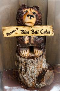 Cabin 2016 - BJ2_0686