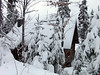 The cabin, tucked into the cliffside below the local «chemin», is smothered in a blanket of Christmas snow.<br /> December 27, 2005