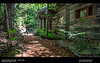 Julia and cabin garden 004