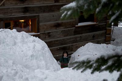 Cabin: outside - in
