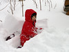 Stella, two and a half years old<br /> Quite a bit of snow at the cabin<br /> December 12, 2004