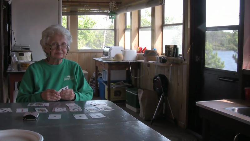 Cabin 2009