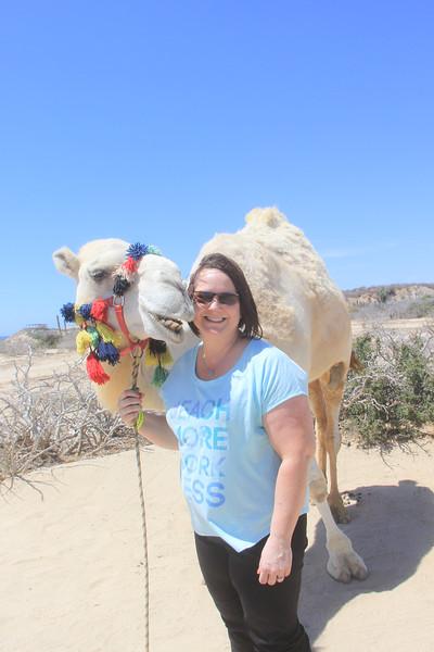 Cabo San Lucas, Mexico - Camel Safari Adventure