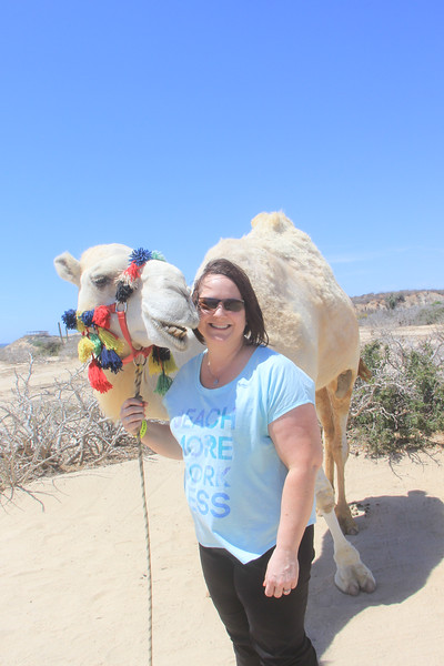 Cabo San Lucas, Mexico - Camel Safari Adventure