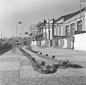 Miramar Restaurant at Cabo de Palos, 1974