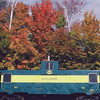 Caboose with Fall Colors. Courtesy Tom.