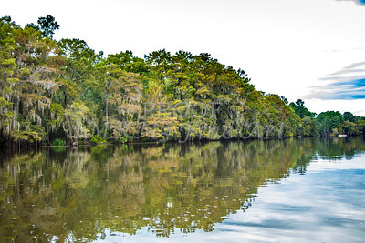 009 .1861 Caddo Lake in Color