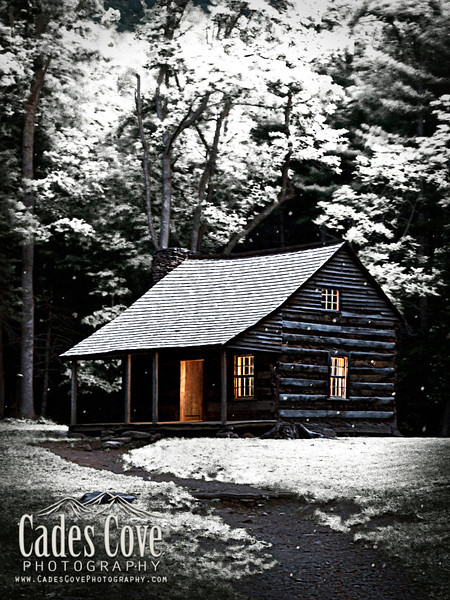 Carter Shields Cabin in Winter