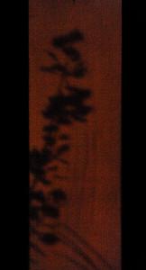 Sombra japonesa