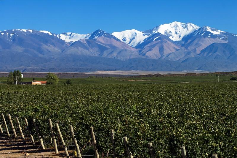 Tupungato,  Mendoza, Argentina