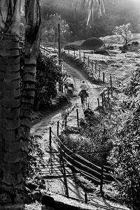 A caballo en São Francisco Javier - Brasil