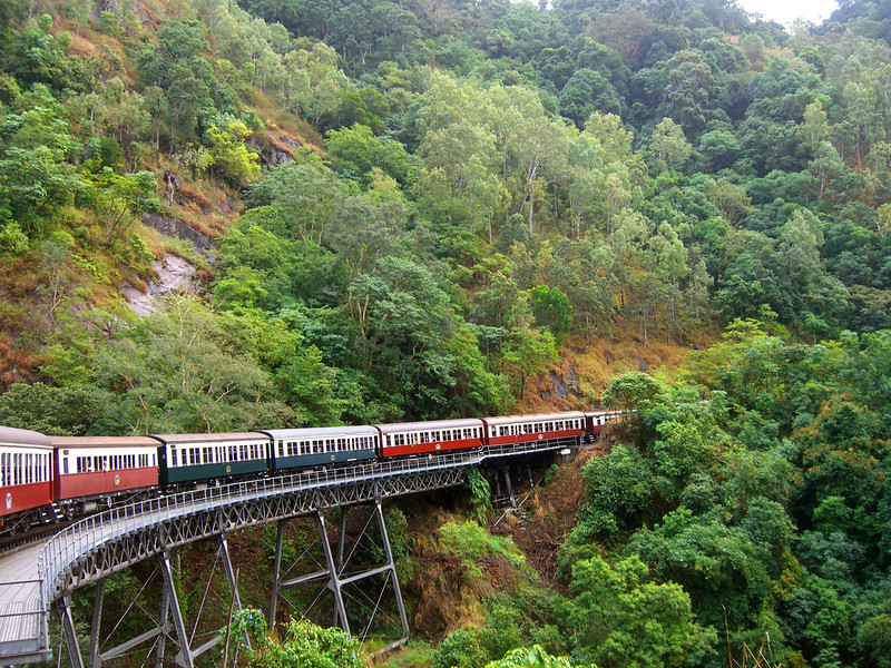 Kuranda Rainforest Tour 484, 464